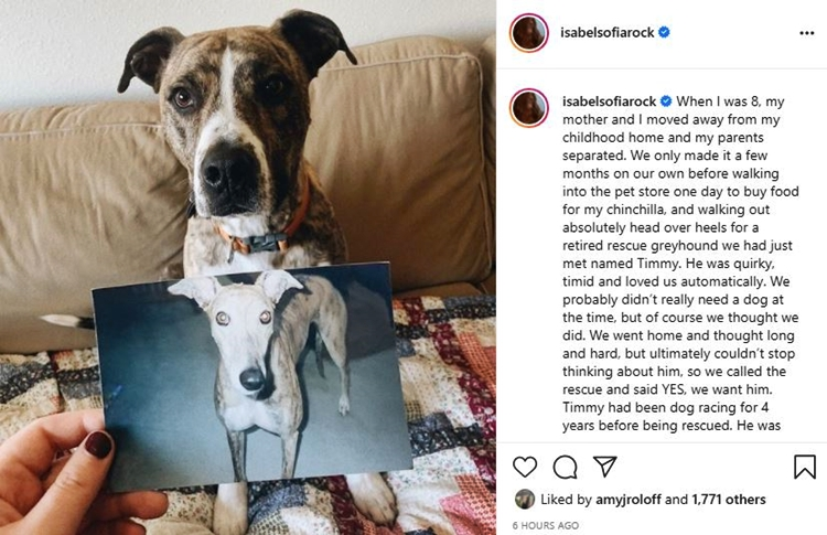 Isabel Rock Believes Her Spirit Pup Found His Way Back To Her