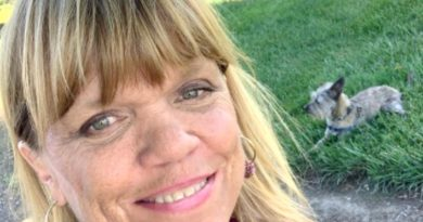 Little People Big World Fans Call For Amy Roloff's Colored Rocks Reveal